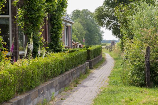 deboershoeve vakantiewoning friesland fietsen