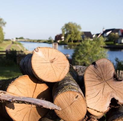 deboershoeve vakantiewoning friesland natuur